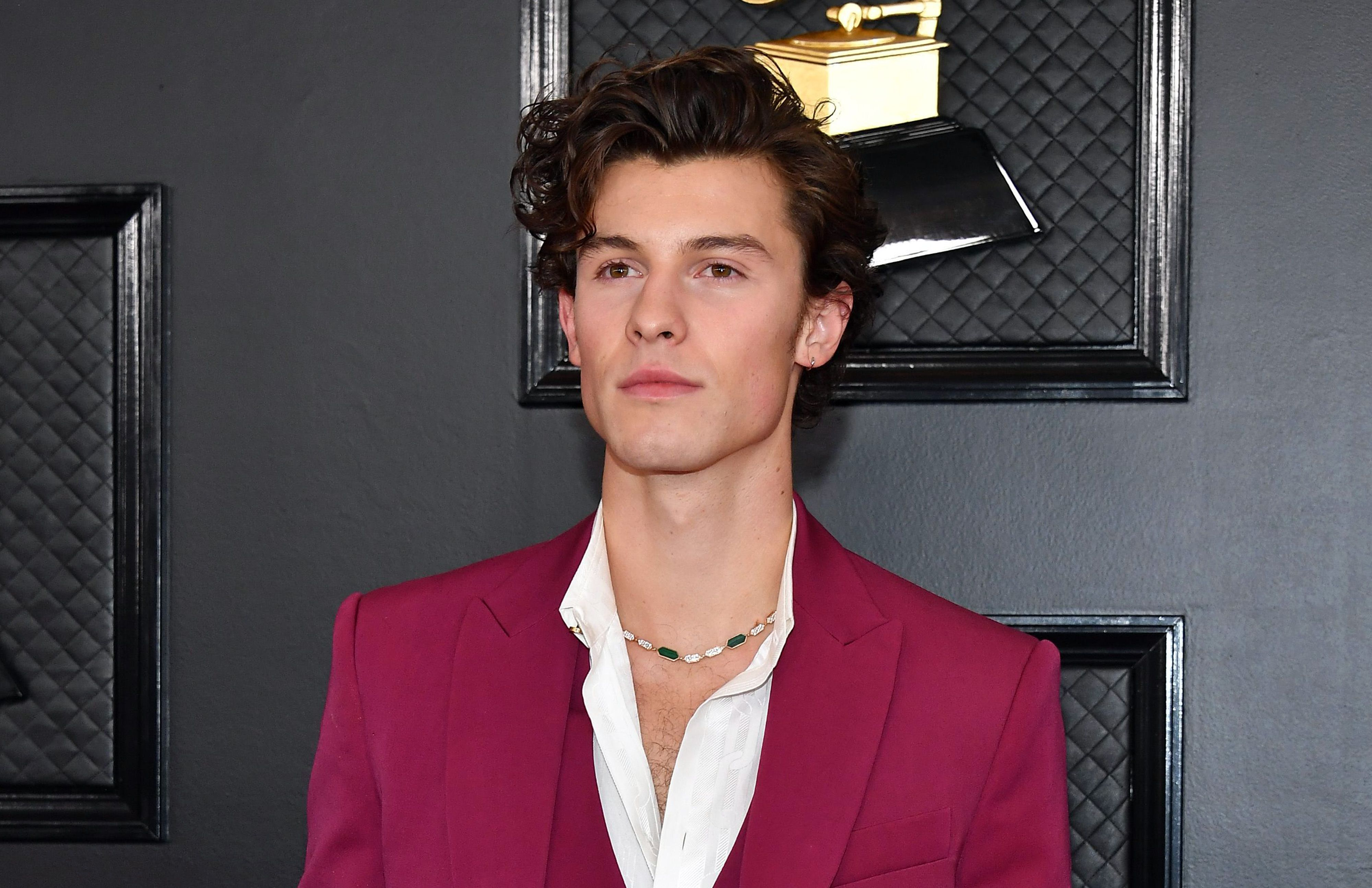 shawn-mendes-attends-the-62nd-annual-gra