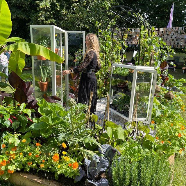 she grows veg   edible get up and grow allotment garden   hampton court palace garden festival 2021