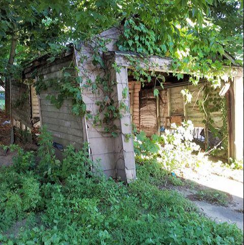 Vegetation, Property, House, Tree, Yard, Building, Plant, Grass, Groundcover, Adaptation,
