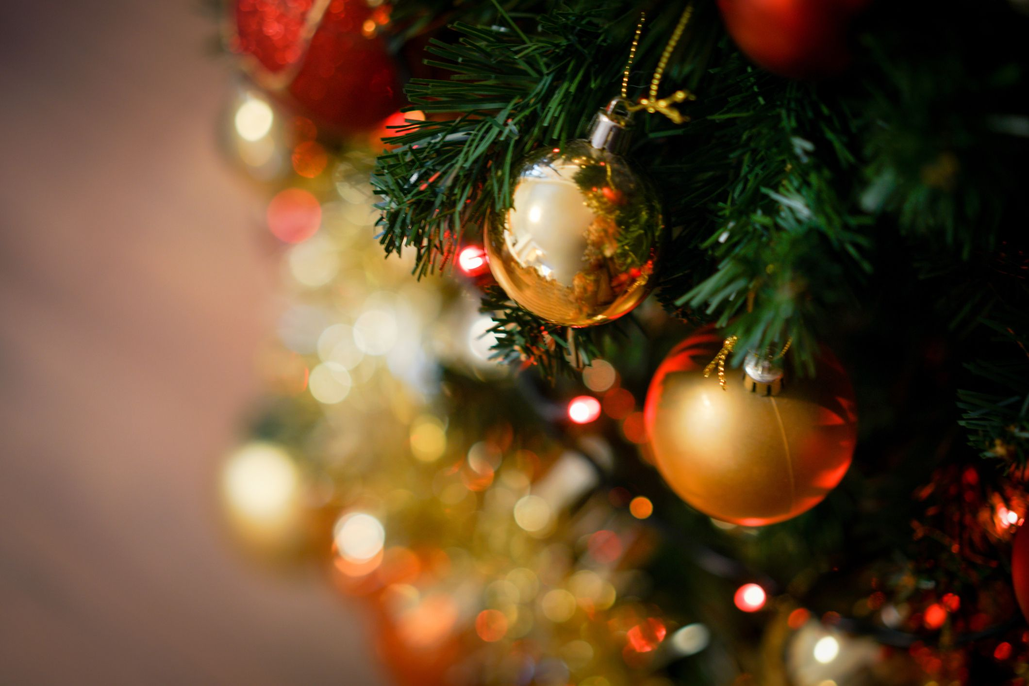 Rainbow <b>Christmas</b> Trees Will Be Biggest <b>Christmas 2018</b> Trend, says ...