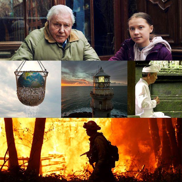 five essential environmental documentaries