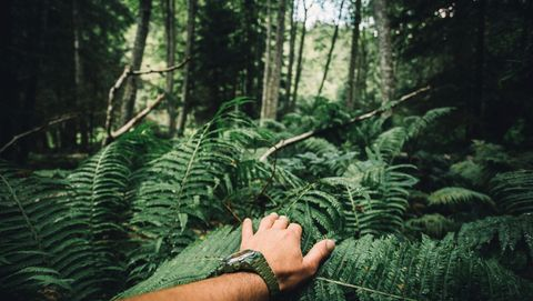 Overleef jij in de wildernis?