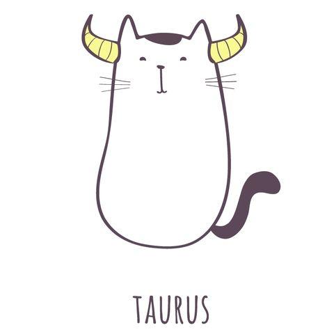學習當隻「會咬人的小貓」!12星座增強氣場與魅力的小秘訣