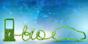 Bio-ethanol milieu