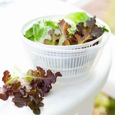 dry lettuce
