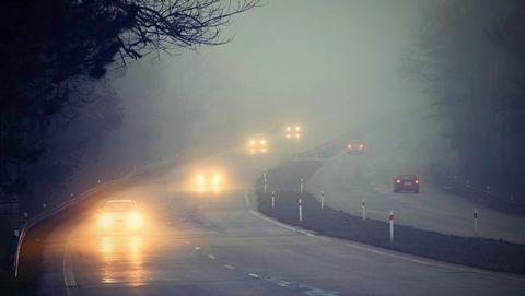 Weetjes over mist