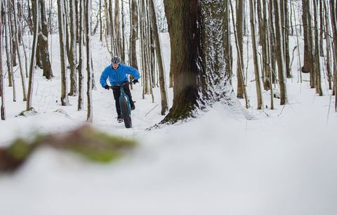 fat biking in woods
