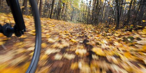 8 Things Every Cyclist Should Do in the Fall