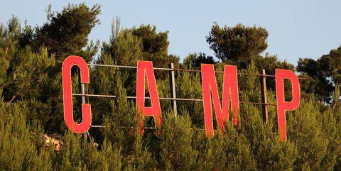Tree, Text, Font, Sky, Grass, Plant, Signage, Sign, Shrub, Logo,