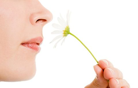 Smelling a flower