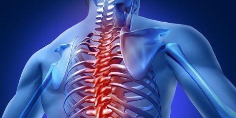 anatomical back pain