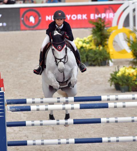 Horse, Show jumping, Bridle, Halter, Animal sports, Sports, Rein, Vertebrate, Equestrian, English riding,
