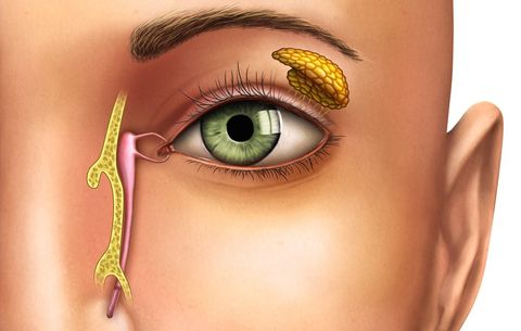 7 Things Your Eye Gunk Says About You | Prevention