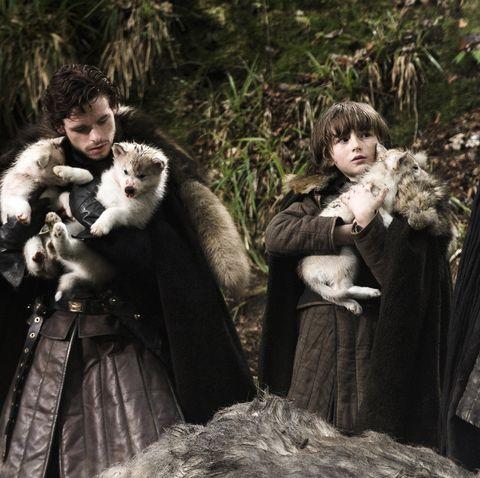 Games of Thrones direwolf