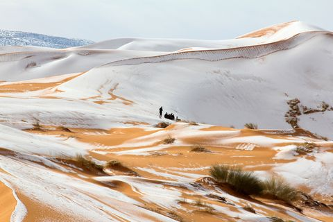 This Is What Snow Looks Like In The Sahara Desert