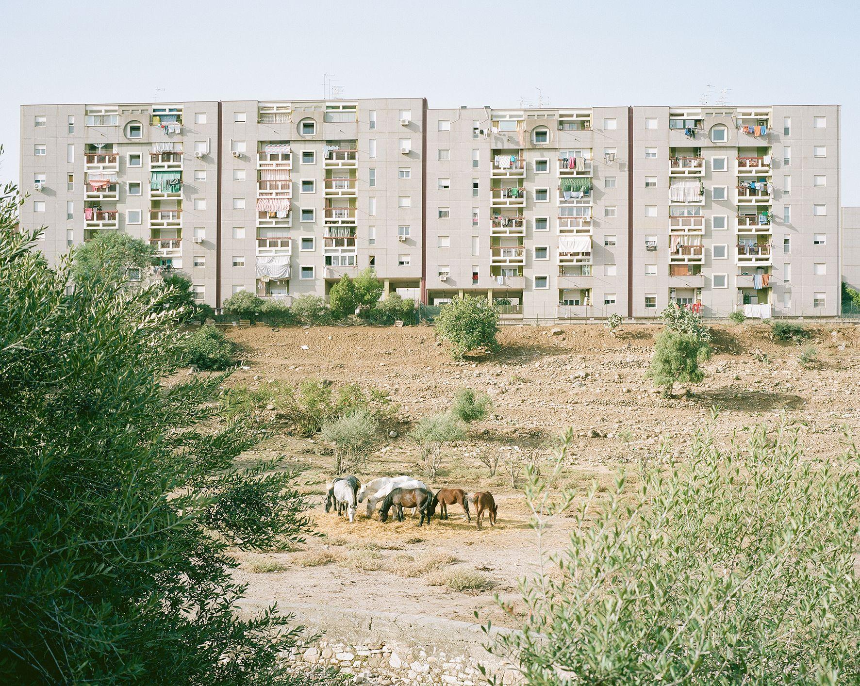Le foto della Sicilia Fantasma di Piero Motisi, ritratto di un paesaggio quasi astratto
