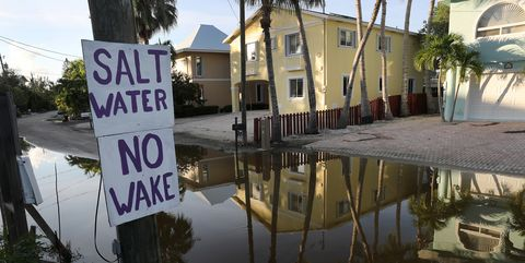 King Tides, Atlantic Storms, And Warm Waters Cause Persistent Flooding In Key Largo, Florida