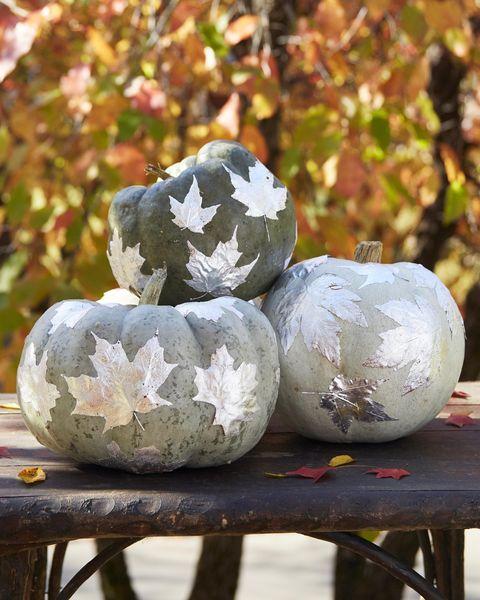silvered leaves pumpkin pumpkin decorating ideas