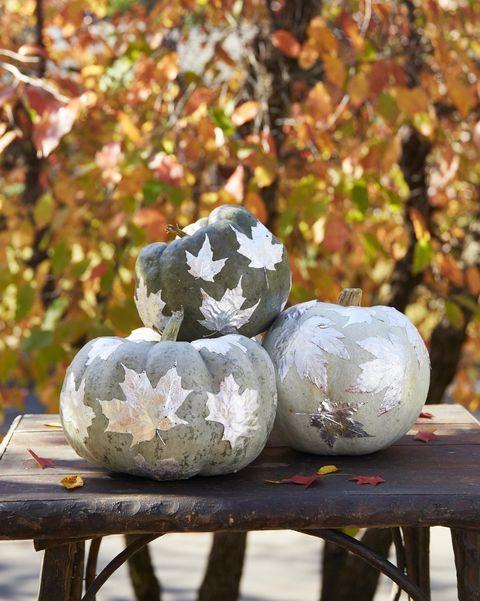 silver leaf pumpkins easy painted pumpkins