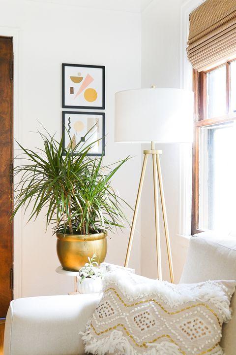 Prix, blanc, meubles, design d'intérieur, chambre, jaune, salon, mur, sol, maison,