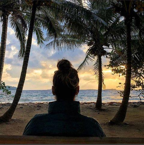 Tree, Palm tree, Arecales, Sky, Vacation, Woody plant, Tropics, Beach, Sea, Plant,