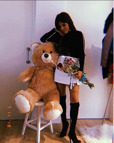 Teddy bear, Stuffed toy, Toy, Fur, Leg, Plush, Thigh, Costume, Human leg, Fawn,