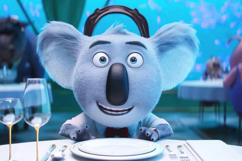 Animated cartoon, Animation, Koala, Cartoon, Snout, Media, Marsupial,