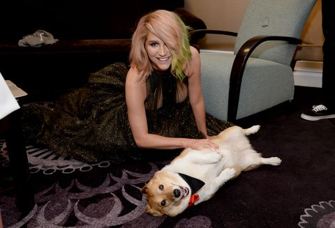 Humane Society Of The United States 60th Anniversary Gala