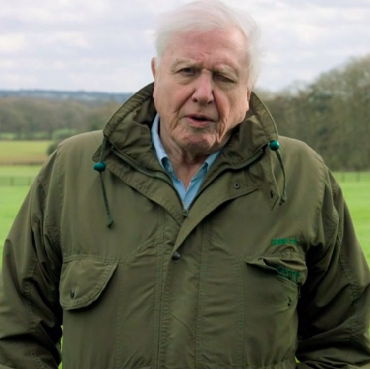 "Sir David Attenborough returns to BBC One for ""heartbreaking"" climate change documentary that leaves viewers with one huge question"