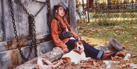 40 Famous Movie Dogs We Wish Were Our Pets