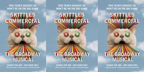 Poster, Cat, Whiskers, Graphic design, Felidae, Flyer,