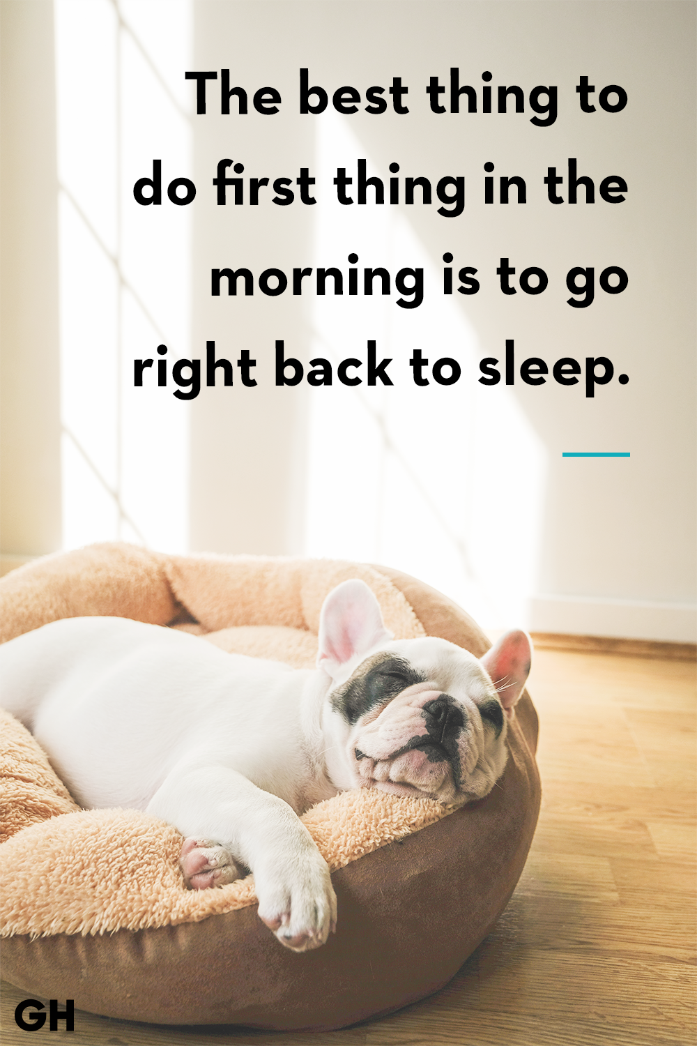 best thing to dosleep quote