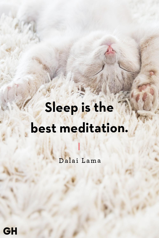 Dalai Lamasleep quote