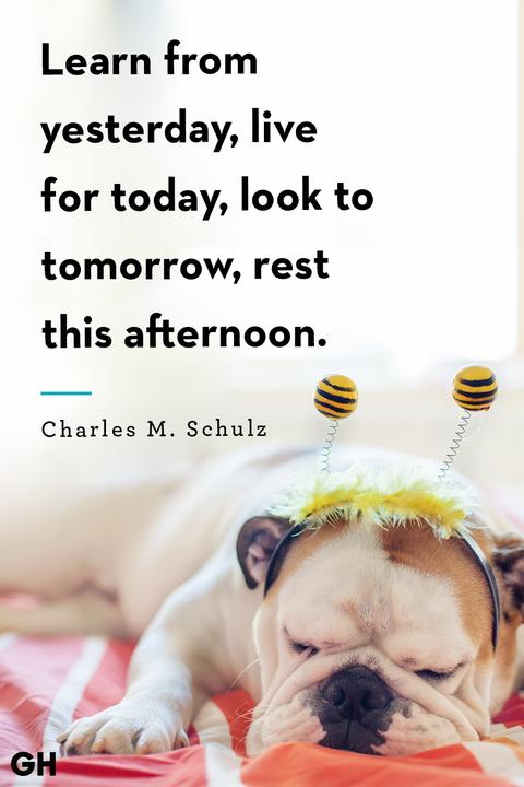 Charles M. Schulzsleep quote