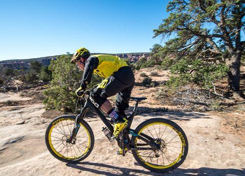Bicycle wheel, Tire, Bicycle tire, Bicycle frame, Wheel, Bicycle wheel rim, Bicycle fork, Mountain bike, Bicycle part, Spoke,