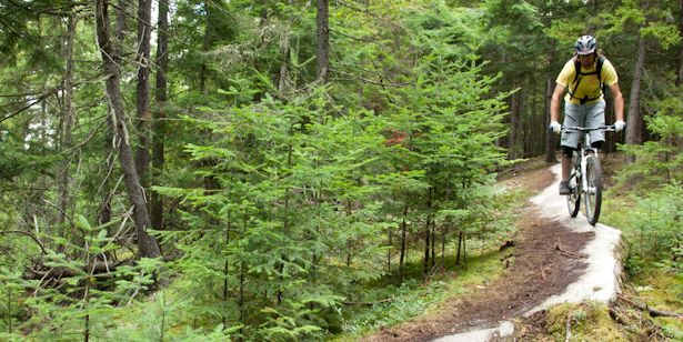 e348d3d8972 10 Best Mountain Biking Trails in Vermont | Bicycling