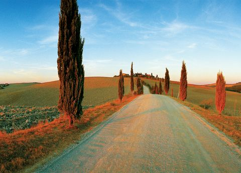 Sky, Road, Horizon, Plain, Rural area, Agriculture, Field, Plantation, Farm, Dirt road,