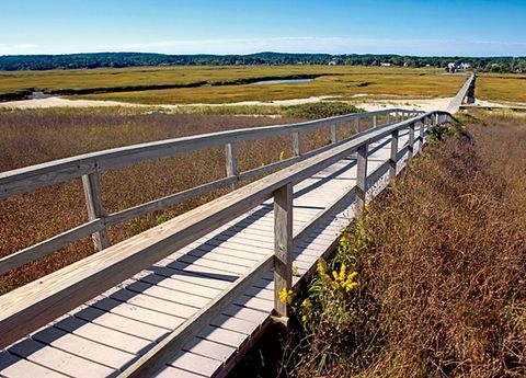 Natural landscape, Plain, Landscape, Guard rail, Horizon, Grassland, Ecoregion, Bridge, Ranch, Field,