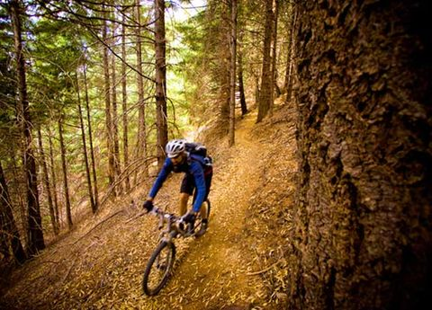 Tire, Wheel, Bicycle wheel, Bicycle frame, Mountain bike, Downhill mountain biking, Mountain biking, Bicycle, Cross-country cycling, Recreation,