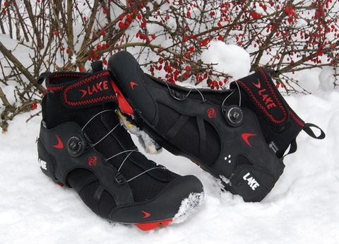 Winter, Branch, Red, Snow, Freezing, Twig, Carmine, Outdoor shoe, Frost, Synthetic rubber,
