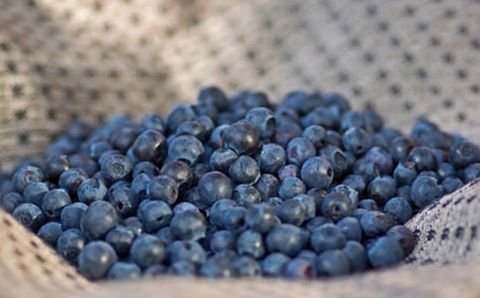 Blueberries good for your heart