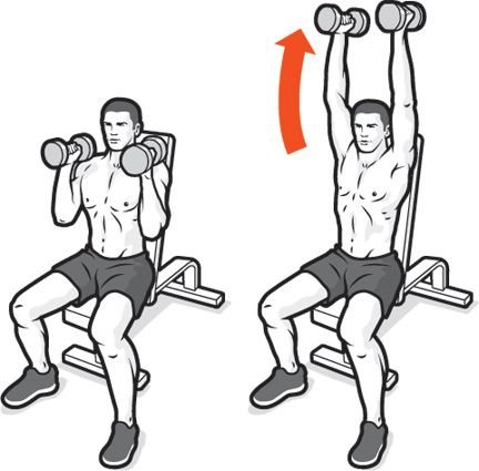 dumbbell-pressing-ladder.jpg