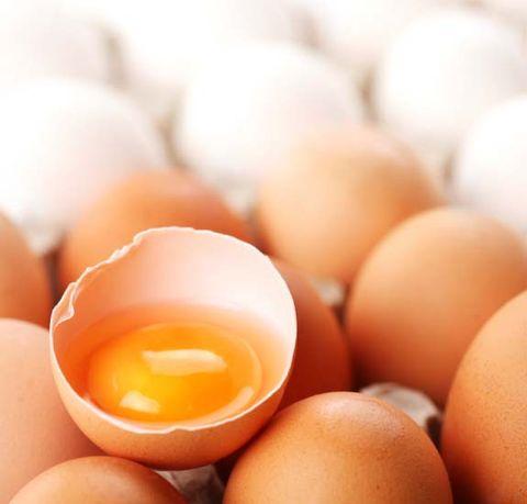 EggRiceBowl.jpg