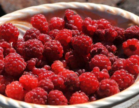 raspberries-edit.jpg