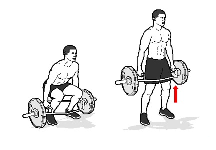 trap-door-deadlift.png