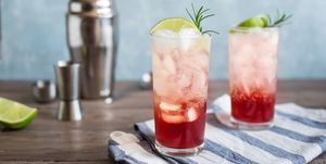 Sloe Gin Fizz Cocktail