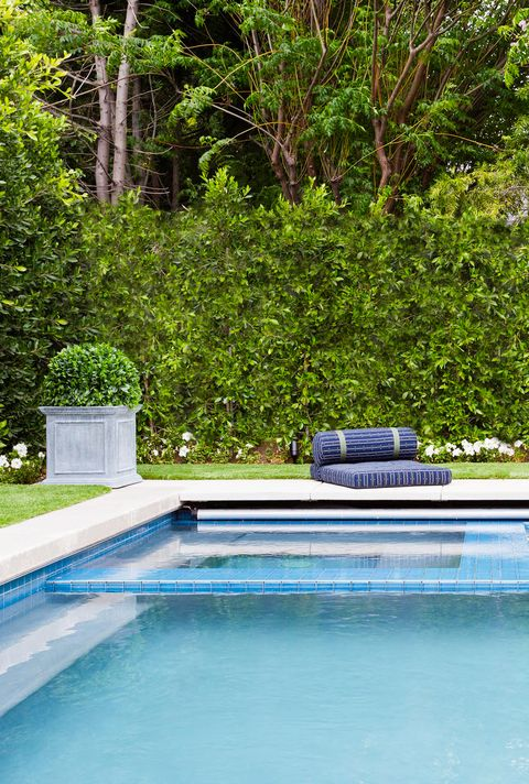 pool with hedge wall and floor cushions behind it