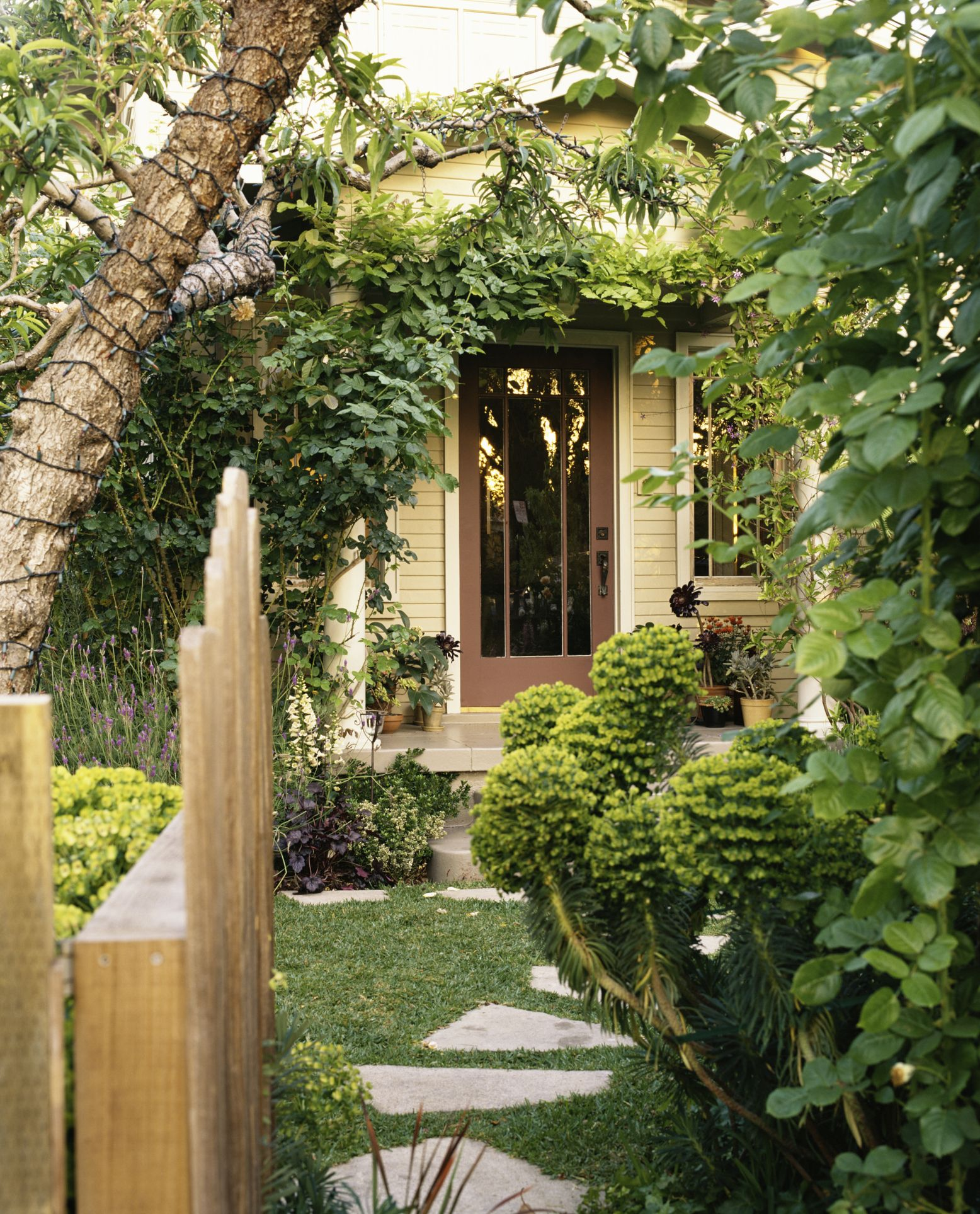 How To Landscape A Backyard On A Budget: Gallery Of T House Creative Architects 17 Houses Gardens