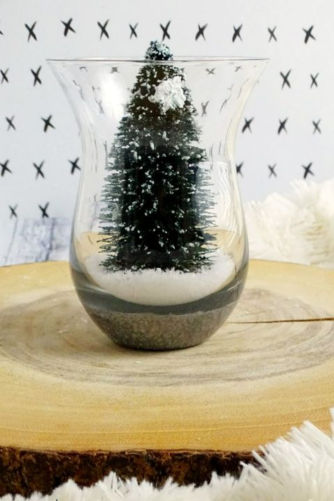 small christmas trees terrarium
