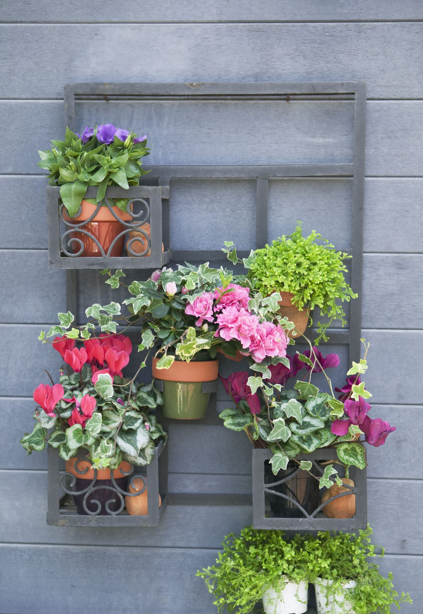 40 small garden ideas small garden designs - Small Garden Design